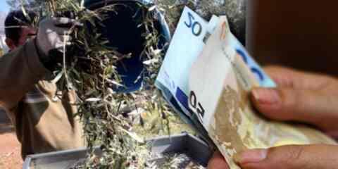 Στα τέλη Οκτωβρίου, οι πληρωμές για το 70% της βασικής ενίσχυσης των αγροτών
