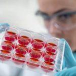 Δύο χρόνια Δημόσια Τράπεζα Ομφαλικών Βλαστοκυττάρων Κρήτης