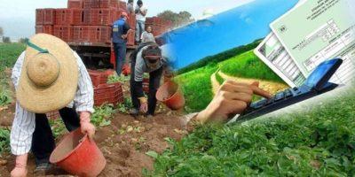 Αλλαγές στη συνταξιοδότηση και στην ασφάλιση των αγροτών