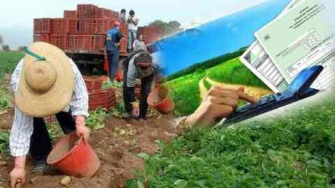 Πακέτο επτά μέτρων για την ενίσχυση των αγροτών