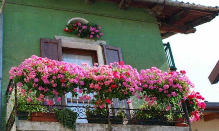 Διαγωνισμός για τον «καλύτερο κήπο» και το «καλύτερο μπαλκόνι» του Δήμου Χανίων