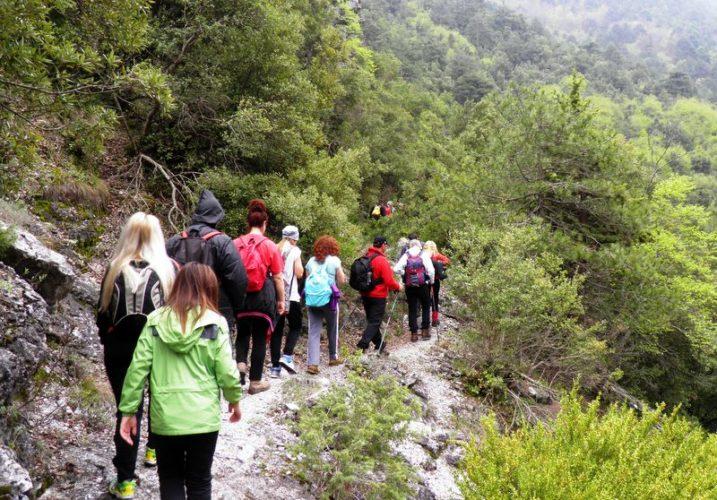 Ο Ορειβατικός από τον Κάμπο στα Πλατανάκια και από εκεί στο Σφηνάρι Κισσάμου