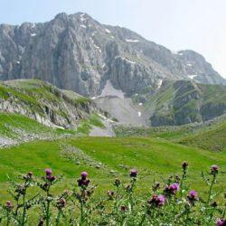 O Ορειβατικός Χανίων στην 78η Πανελλήνια Ορειβατική Συγκέντρωση