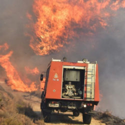 Πολύ υψηλός (4) ο κίνδυνος πυρκαγιάς σήμερα σε όλη την Κρήτη