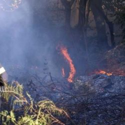 Υποβολή οριστικών δηλώσεων ζημιάς για τους ζημιωθέντες από τις πυρκαγιές στις 23/3/18 & 23/7/18 στον Δήμο Πλατανιά