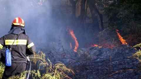 Συγχαρητήρια Βουλγαράκη προς πυροσβέστες, δήμος και εθελοντές, για τις πρόσφατες φωτιές στα Χανιά