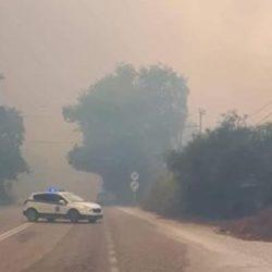 WWF Ελλάς: Καλύτερη η εικόνα των δασικών πυρκαγιών φέτος το καλοκαίρι