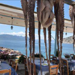 Αδιατάρακτη η σχέση του Έλληνα με την ...ταβέρνα, τα χρόνια της κρίσης