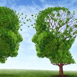 Κάταγμα ισχίου και Αλτσχάιμερ: Πώς συνδέονται;