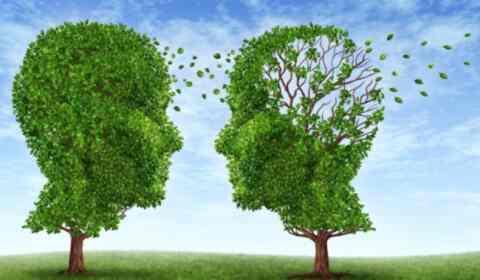 Εκδηλώσεις ευαισθητοποίησης για τη νόσο του Alzheimer σε Αποκόρωνα και Σφακιά