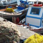 Προθεσμία μέχρι τέλος του μήνα για τις ειδικές άδειες αλιείας