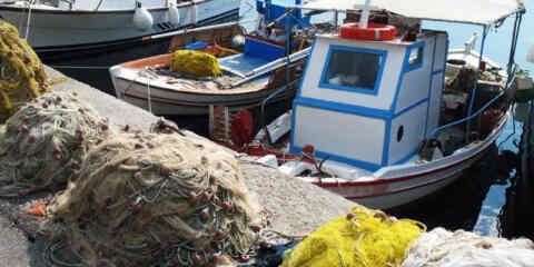 Υπενθύμιση υποχρέωσης υποβολής στοιχείων αλιευτικών δραστηριοτήτων