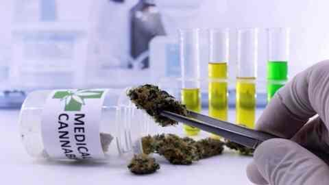 Μεγάλο ενδιαφέρον για επενδύσεις σε προϊόντα φαρμακευτικής κάνναβης