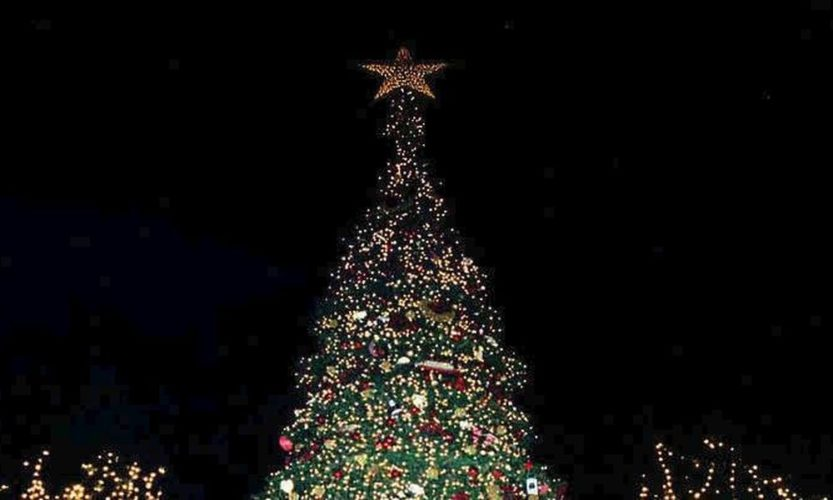 Ανάβει το Χριστουγεννιάτικο δέντρο στην πλατεία της ΔΕΥΑΒΑ στο Γεράνι