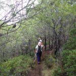 Δραστηριότητες του Ορειβατικού Συλλόγου Χανίων