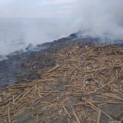 Έκκληση του δήμου Πλατανιά, να μην βάζουν οι πολίτες φωτιές στις παραλίες