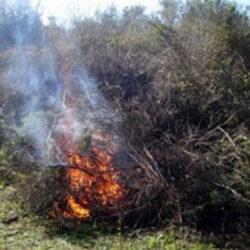 Σεμινάριο για την καύση των αγροτικών υπολειμμάτων στην Ορθόδοξο Ακαδημία Κρήτης