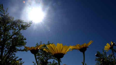 Θερμότερος ο φετινός χειμώνας στο μεγαλύτερο τμήμα της Ελλάδας