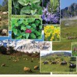 Eνημερωτικές εκδηλώσεις αγροτών για την προώθηση των προϊόντων τους σε τουριστικές επιχειρήσεις