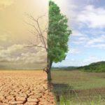 Κώδωνας κινδύνου: Έρημος απειλείται να γίνει η μισή Κρήτη τα επόμενα χρόνια