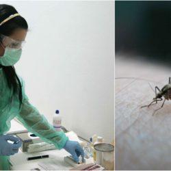 Επιβεβαιώθηκαν τα δύο πρώτα κρούσματα του ιού του δυτικού Νείλου
