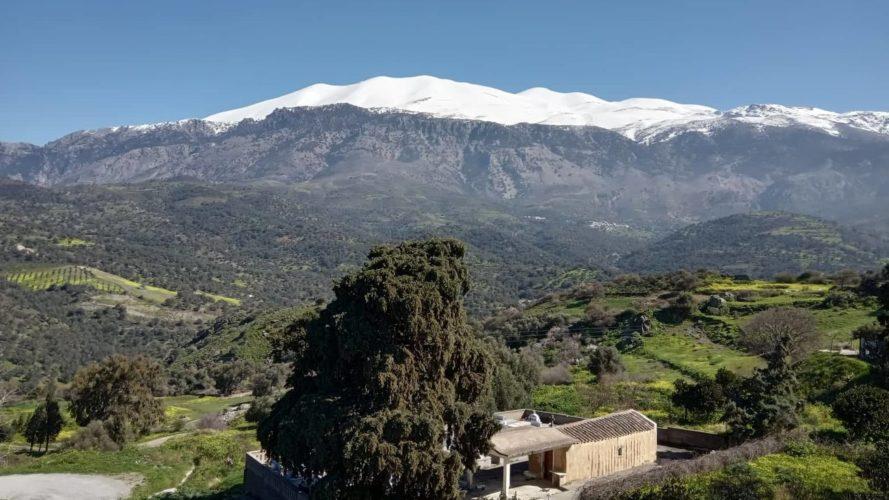 Ιδρύεται Παρατηρητήριο Υπαίθρου Κρήτης