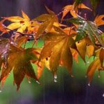 Αισθητή πτώση της θερμοκρασίας και βροχές από σήμερα στα Χανιά