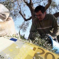 Έκτακτη ενίσχυση ελαιοπαραγωγών: Δεν προσμετράται στο αγροτικό εισόδημα