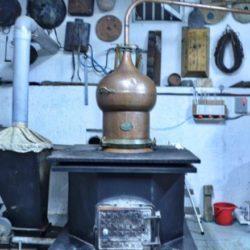 """Το Σάββατο στο Γιαλί Τζαμί, η καθιερωμένη """"γιορτή τσικουδιάς"""""""