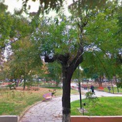 """Στις 7 Φεβρουαρίου αναρτώνται οι απαντήσεις του δήμου Χανίων για το """"Πάρκο της γειτονιάς"""""""