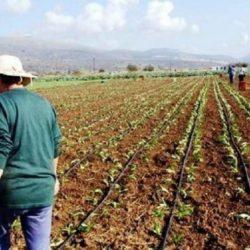 Υπόψιν του Μάκη Βορίδη τα επείγοντα ζητήματα του αγροτικού κόσμου της Κρήτης
