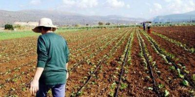 Δημόσια διαβούλευση από την Περιφέρεια Κρήτης για την νέα Κοινή Αγροτική Πολιτική