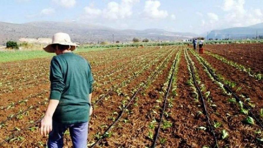 Εγκρίθηκαν 841 σχέδια βελτίωσης του προγράμματος ΠΑΑ, στην Κρήτη