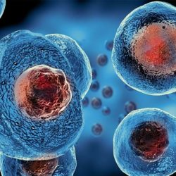 Εκδήλωση βράβευσης οικογενειών εθελοντών δοτών βλαστοκυττάρων