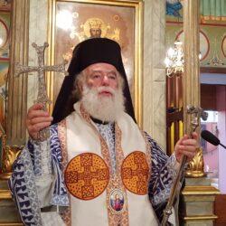 Πατριάρχης Αλεξανδρείας Θεόδωρος: 30 χρόνια αρχιερατείας