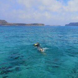 Ο Δήμος Κισάμου, για την υπερπροσπάθεια του κολυμβητή Κώστα Βαρουχάκη