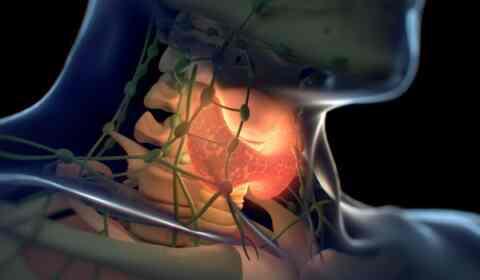 Οστεοπόρωση: Πότε μια επέμβαση μπορεί να αναδομήσει τα οστά;
