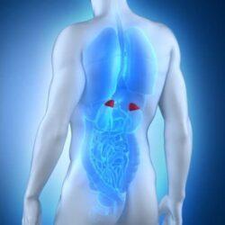 Χειρουργική αφαίρεση επινεφριδίων: Πότε χρειάζεται