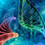 Ανοσοθεραπεία: Η μεγάλη ελπίδα για τη θεραπεία του καρκίνου
