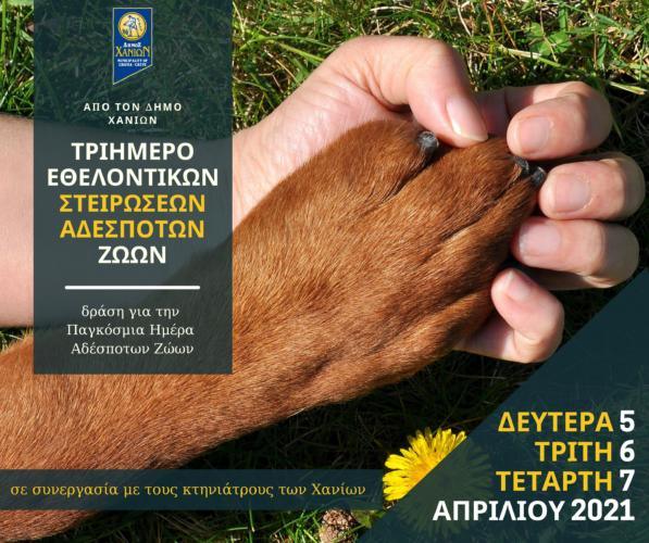 Τριήμερο εθελοντικών στειρώσεων σε αδέσποτα ζώα συντροφιάς από τον Δήμο Χανίων
