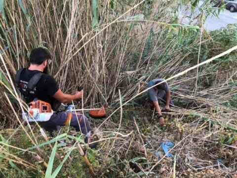 """Μικρά """"δάση από ξερά χόρτα"""" μέσα στην πόλη, καθάρισαν συνεργεία του δήμου Χανίων"""