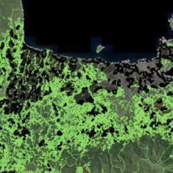 Υποβολή εγγράφων στο Δασαρχείο για σφάλματα σε δασικούς χάρτες