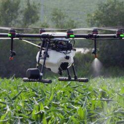 Περιφέρεια και ΕΛΜΕΠΑ, δοκιμάζουν τους ψεκασμούς δακοκτονίας με drones