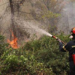 Υψηλός ο κίνδυνος εκδήλωσης πυρκαγιάς στην Κρήτη